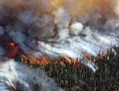 В Канаде ожидается больше лесных пожаров из-за изменения климата