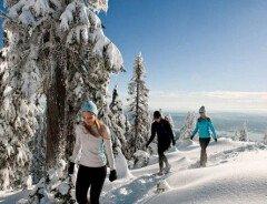 Бесплатные тропы для прогулок на снегоступах в Ванкувере