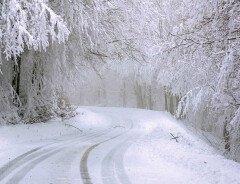 В Британской Колумбии в течение недели ожидаются сильные морозы