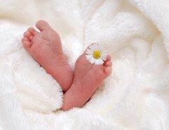 В Британской Колумбии из-за COVID-19 наблюдается рекордно низкая рождаемость