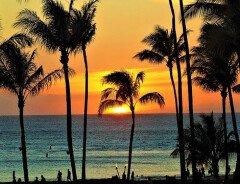 С 1 сентября канадцы смогут поехать на Гавайи без соблюдения карантинных мер