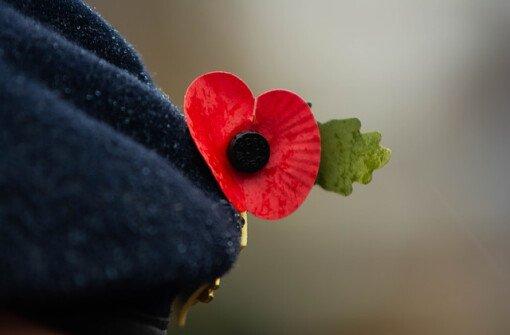 Почему в Канаде в День памяти павших носят мак?