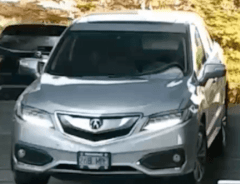 Водитель в Ванкувере решил сократить путь по ступенькам (ВИДЕО)