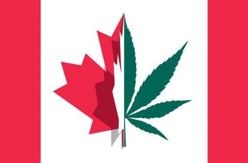 В Ванкувере платят 50 долларов в час за курение марихуаны