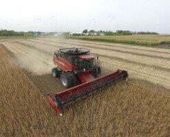 Иммиграционная программа для фермеров в Манитобу (Manitoba Farm Investor Pathway)