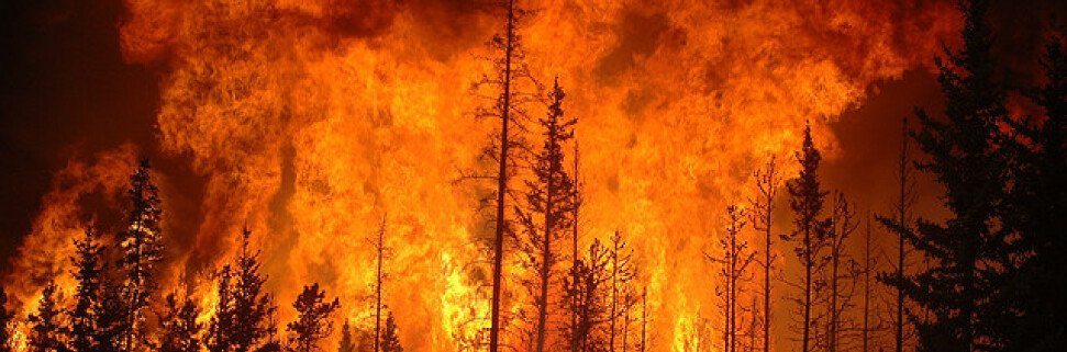 Лесной пожар в Канаде