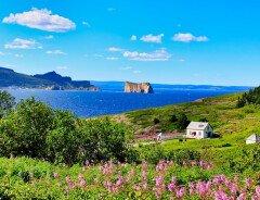 За какую цену можно купить загородный дом в Канаде: статистика по провинциям