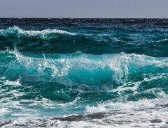 Канада приняла на себя обязательства по сохранению 30% морских вод к 2030 году