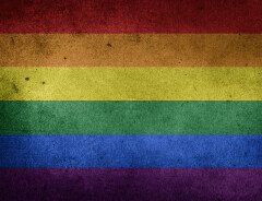 Мужчина совершил вандализм на пешеходном переходе Pride в центре Калгари из-за ненависти к геям