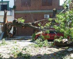 Сотни тысяч людей в Атлантической Канаде все еще остаются без электроэнергии после урагана Дориан
