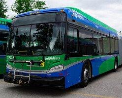 4 новых маршрута RapidBus компании TransLink будут запущены в январе 2020 года