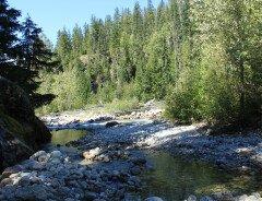 Горячие источники реки Халфуэй (Halfway River Hot Springs)