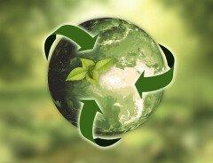Экология или экономика: трудный выбор для либерального правительства в 2020 году