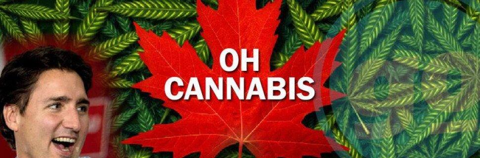 Сколько стоит марихуана в Канаде