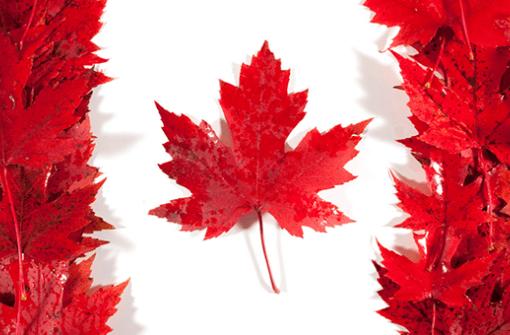 Переезд в Канаду: стоит ли ехать в 2019? Плюсы и минусы Канады