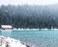 В Британской Колумбии этой зимой ожидаются температуры выше средних: прогноз погоды