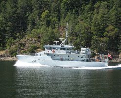 Флот Канады заменит слово моряк (seaman) в званиях гендерно-нейтральным термином