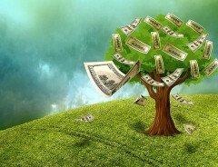 Изменение климата может создать риск для финансовой системы Канады