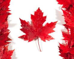 Переезд в Канаду: стоит ли ехать в 2020? Плюсы и минусы Канады