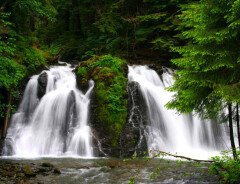 Пеший маршрут к водопаду Голд Крик (Gold Creek Falls)