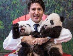 10 забавных фактов о премьер-министре Канады Джастине Трюдо