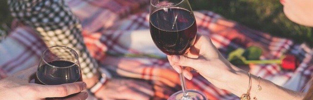 Во многих парках Ванкувера скоро могут разрешить распивать спиртные напитки