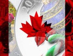 13 фактов о рождестве в Канаде, о которых вы не знали