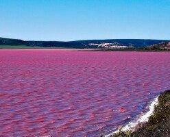 Необычное розовое озеро Dusty Rose в Британской Колумбии