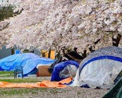 Возможное переселение бездомных из парка Оппенгеймер вызвало неоднозначную реакцию