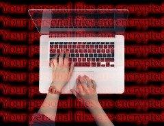 Тысячи аккаунтов CRA были взломаны в результате пары кибератак