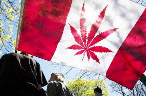Канадцы потратили $54 млн на травку в первый месяц после ее легализации
