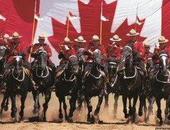 Как стать полицейским в Канаде: что для этого нужно?