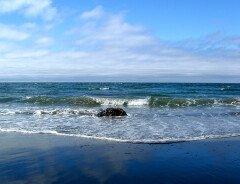 Мужчина начинает в одиночку очищать береговую линию Британской Колумбии