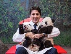 Премьер-министр Канады: самые забавные ФОТО Джастина Трюдо
