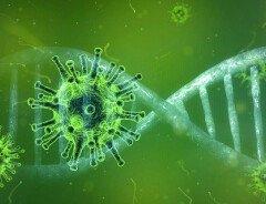 В Канаде начинает снижаться число случаев заболевания COVID-19