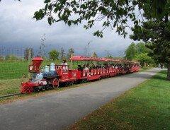 Миниатюрный Сафари поезд (Safari Express Miniature Train)