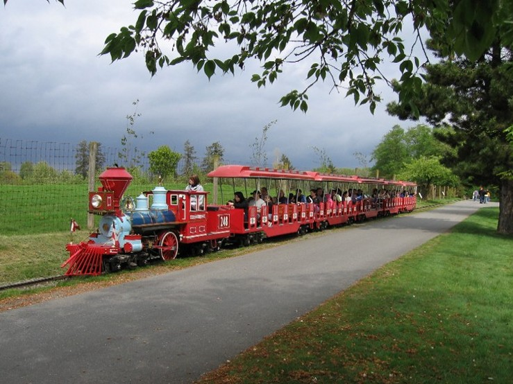 Миниатюрный Сафари поезд (Safari Express Miniature Train)