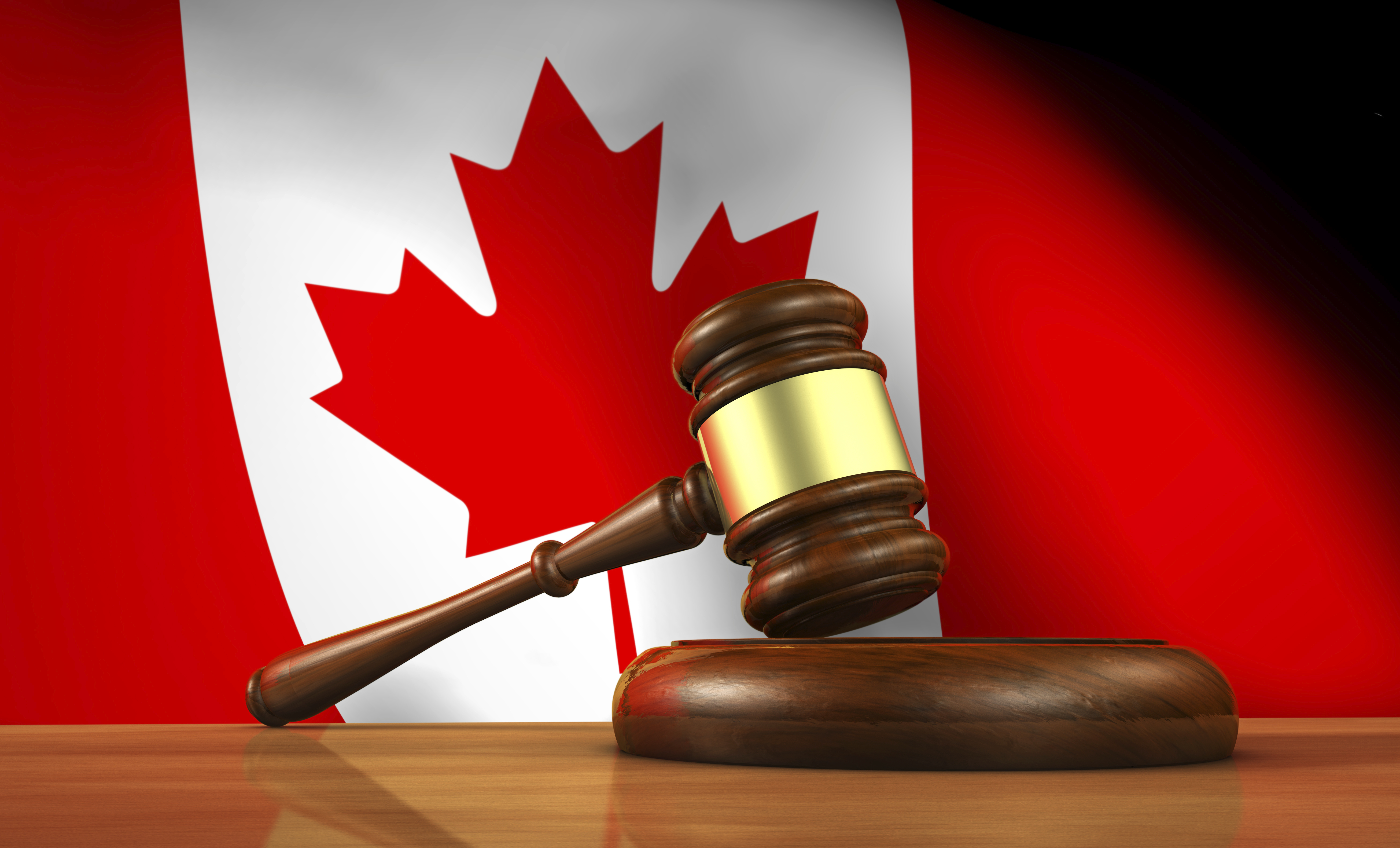 an analysis of the government and law in canada Law and contemporary problems [vol 55: no 1 could not have foreseen the extent to which congress would be empowered to control the economy in canada, by contrast, the clause giving the central government control.