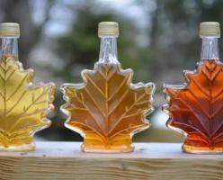 О кленовом сиропе - главном символе Канады