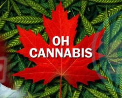 Легализация марихуаны в Канаде может обернуться проблемами на границе с США