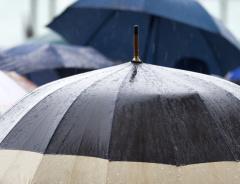 Чем заняться в Ванкувере: 15 лучших занятий, про которые можно вспомнить в дождливый день