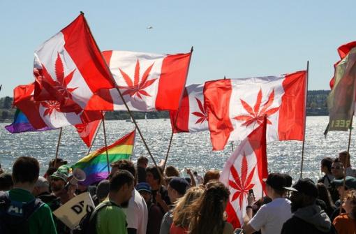 Как в Канаде отмечают праздник/протест 420