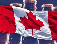 Ежедневно 200 канадцев попадают в больницу из-за злоупотребления алкоголем