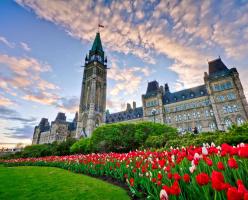 Иерархия канадского правительства