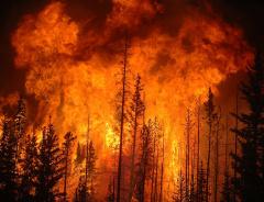 Лесной пожар в Канаде (г. Форт МакМюррей), как жители уезжают из города (ВИДЕО)