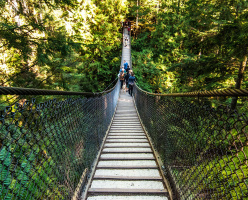 Висячий мост каньона Линн (The Lynn Canyon Suspension Bridge)