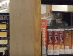 Канада, Библиотека в Виннипеге