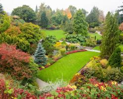 Парк королевы Елизаветы (Queen Elizabeth Park)