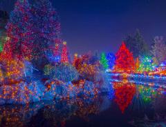 Фестиваль рождественских огней в садах Ван Дюсен открывается 1 декабря (ФОТО)