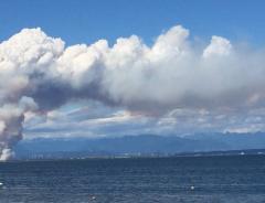 МОЛНИЯ: Массивный пожар в Дельте, дымом охватило несколько городов б. Ванкувера